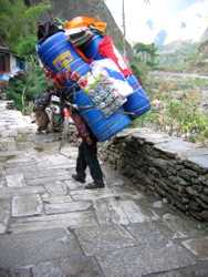 sherpa walking carrying load