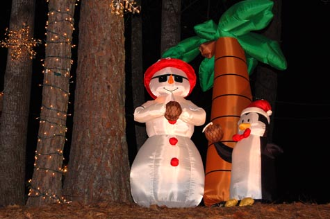 Accomplices Were Behind Every Tree