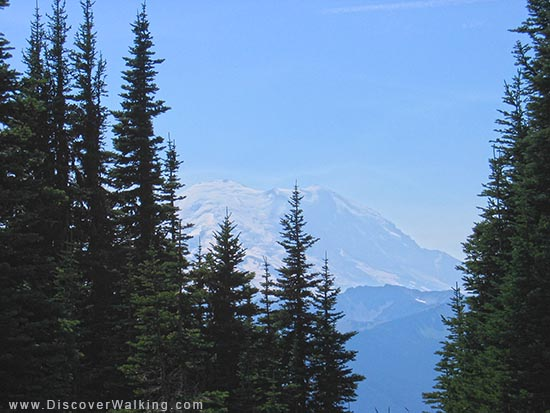 Mt Rainier - Washington