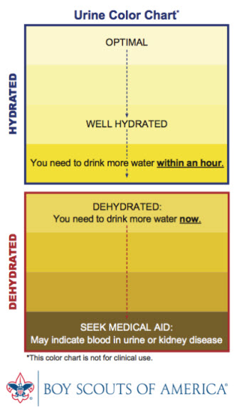 Urine Hydration Color Chart