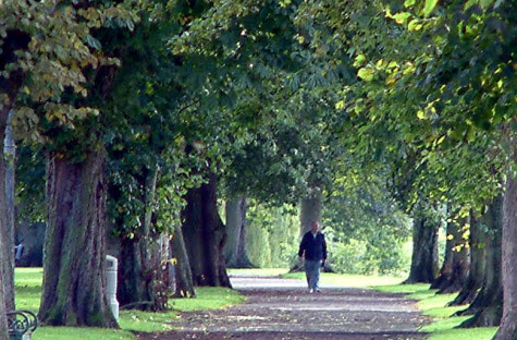 Walking May Postpone the Onset of Dementia