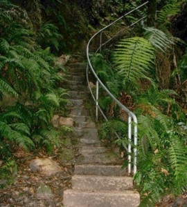 Walk Stairs to Burn More Calories